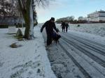 3/12-2012. Endelig sne... og Zen trækker Jonas...